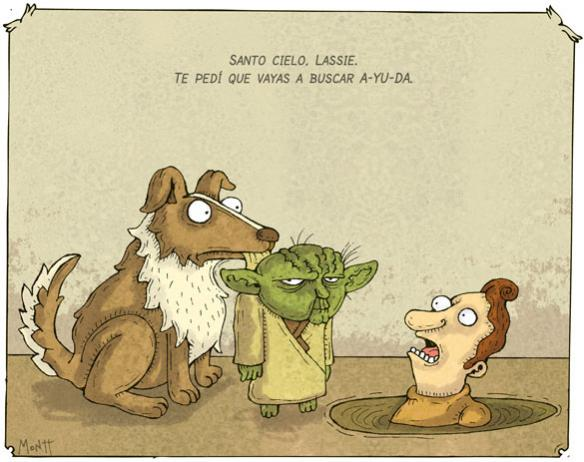 Montt - Yoda