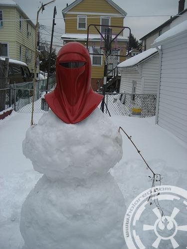 Snow Guard I